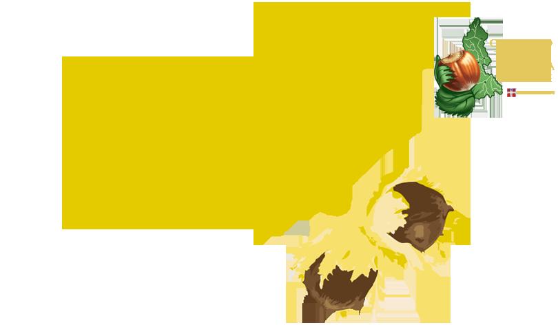 Gala Nocciole